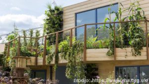 Greening-Grey-Britain_Garden-Professor-Nigel-Dunnett_wynik