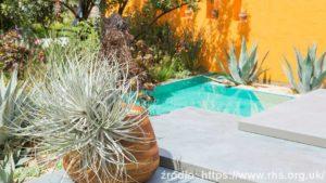 Inland-Homes-Beneath-a-Mexican-Sky-Manoj-Malde-silver-gilt-medal-winner_wynik