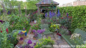 The-Anneka-Rice-Colour-Cutting-Garden-Sarah-Raven_wynik