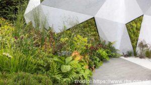 The-Jeremy-Vine-Texture-Garden-Matt-Keightley_wynik