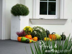 Aurea-Maja-w-ogrodzie-DSC08967