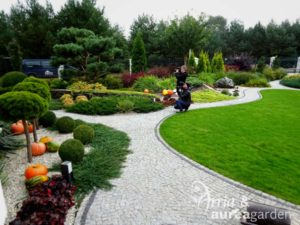 Aurea-Maja-w-ogrodzie-DSC09044